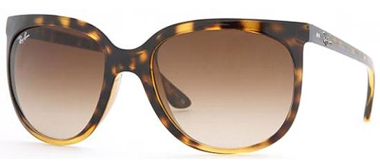 Pic from Easy Lunettes/ Rayban Cats.